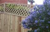 images of Steel Fencing Pets