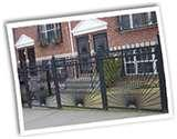 Steel Fencing Pets pictures