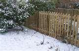 Steel Fencing Pets images