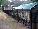 Steel Fencing Pets