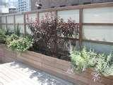 pictures of Steel Fencing Nyc