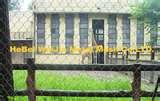 Stainless Steel Fencing Mesh pictures