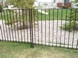 Steel Panel Fencing images