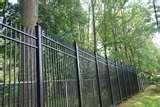 Steel Fence 42-inch pictures