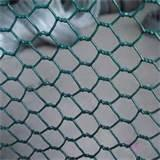 Pictures of Steel Fence Chicken Wire