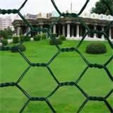 Steel Fence Chicken Wire Pictures