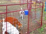 Steel Fence Craigslist Pictures