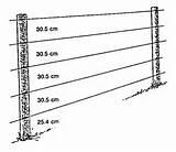 Pictures of Steel Fence Grounding