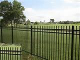 Pictures of Steel Fence Industrial