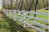 Steel Fence Horse
