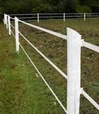 Photos of Steel Fence Horse