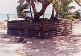 Steel Fence Kwajalein Photos