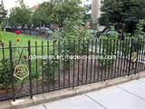 Photos of Steel Fence Landscape